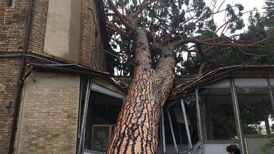 Maltempo: danneggiato ospedale di Loreto