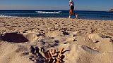 Santa Margherita vieta fumo su spiagge