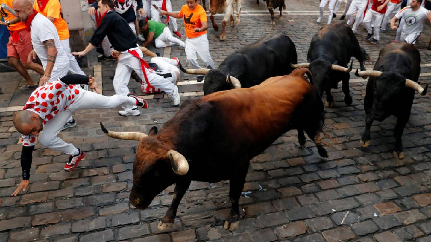 Five hospitalised on seventh day of Pamplona bull run | Euronews