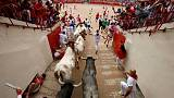 Eight hospitalised on last day of Pamplona bull-run