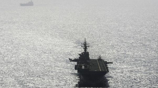 Trump says U.S. Navy 'destroyed' Iranian drone in Strait of Hormuz