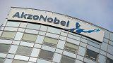 Akzo Nobel's second quarter profit surges despite car industry weakness