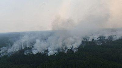 بوتين يأمر الجيش بالمساعدة في مكافحة حرائق الغابات في سيبيريا