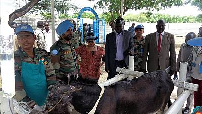 Indian peacekeepers give Malakal vet hospital a facelift (by Gagan)