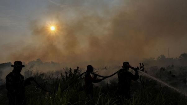 Indonesia president threatens to sack fire fighters if forest blazes not tackled