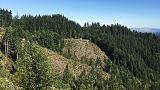 تقرير: أمريكا خسرت حوالي 24 مليون فدان من أراضي الطبيعة في 16 عاما