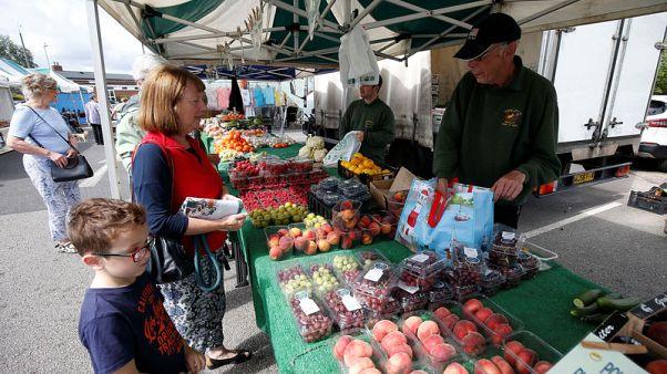 Britain faces food shortages in no-deal Brexit scenario, industry body says