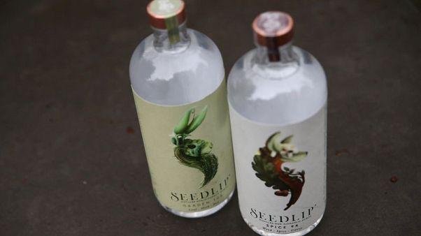 Diageo buys majority stake in non-alcoholic spirit maker Seedlip