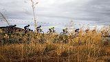 Europei ciclismo: Piccolo è bronzo jr