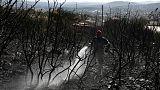 Greece battles wildfire on Evia island, smoke blankets Athens