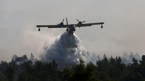 Fire rages on Greece's Evia, threat to people averted