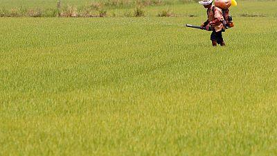 تايلاند تخطط لإطلاق حزمة حوافز بقيمة 10 مليارات دولار لدعم الاقتصاد