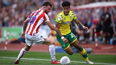 Norwich's Hernandez faces long spell out with knee injury