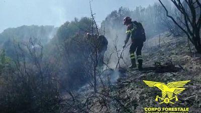 Incendi,3 Canadair in azione in Sardegna