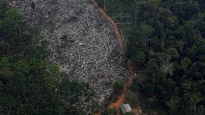 Deforestation in Brazil, vote in Argentina endanger EU-Mercosur pact