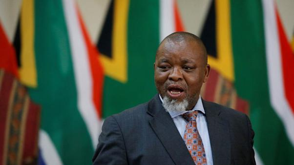 South Africa will look into modular nuclear technology: energy minister