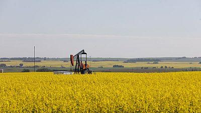 النفط يستقر مع هبوط مخزون الخام الأمريكي وزيادة مخزون الوقود
