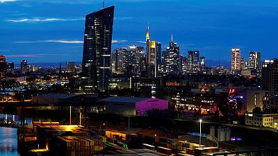Euro zone business growth recovers, but outlook worsens - PMIs
