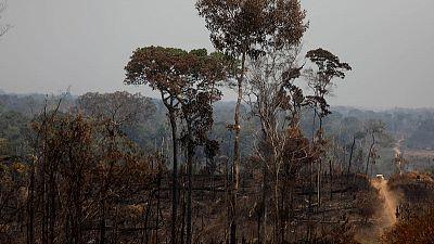 زعماء مجموعة السبع يقتربون من اتفاق لتقديم 20 مليون دولار لمكافحة حرائق الأمازون