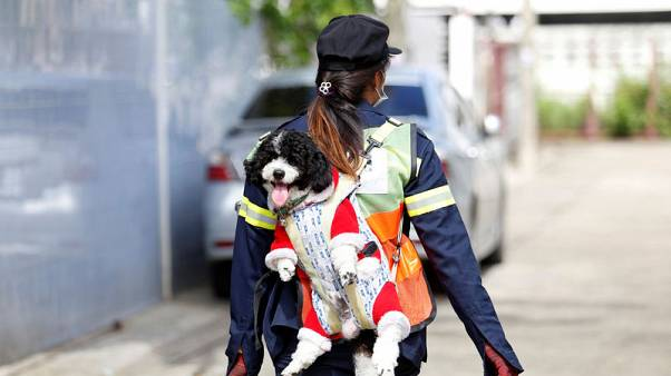 A dog's life: Bangkok street sweeper carries pet to work