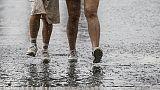 Toscana, codice giallo per pioggia