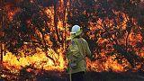 Australians flee homes as police investigate suspicious fires