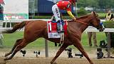 Horse racing-Local weed caused Justify's positive drug test - Baffert
