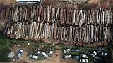 Hundreds killed in Brazil's Amazon over land, resources in past decade - HRW report