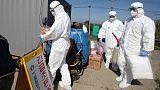 South Korea confirms second case of deadly African swine fever, pledges vigilance