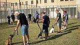 Detenuti educano cani per riabilitarsi
