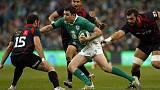 Irish eyes could prove vital for Springboks in World Cup campaign