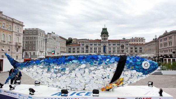 Bandiere a mezz'asta, Trieste a lutto