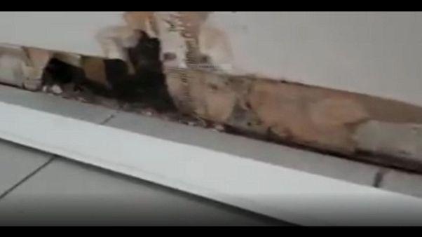 Sisma,muffa e umidità in casetta Arquata
