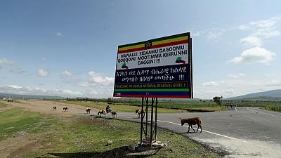 Ethiopia postpones autonomy referendum for ethnic Sidama - Fana news agency