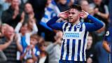 Brighton's Connolly must be protected, says Potter