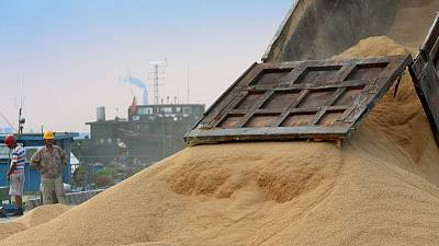 After trade talks in U.S., China ramps up Brazilian soy purchases