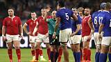 World Cup referee's picture with Wales fans riles French