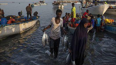 L'UE fait un don de 40 millions d'euros pour soutenir la pêche durable et l'aquaculture en Afrique, dans les Caraïbes et dans le Pacifique