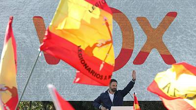 Spain's far-right seen boosting score in November 10 election - poll