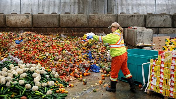 Vatican conference urges governments to tackle food loss and waste
