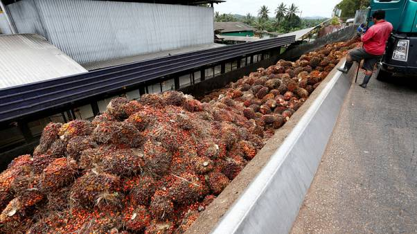 Malaysian palm oil to meet new EU food safety levels by 2021 - minister