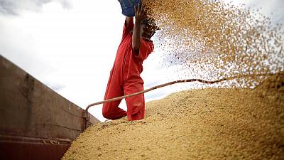 Europe says Brazil's move to end soy moratorium threatens $5-billion market