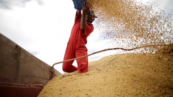 Europe says Brazil's move to end soy moratorium threatens $5-billion market