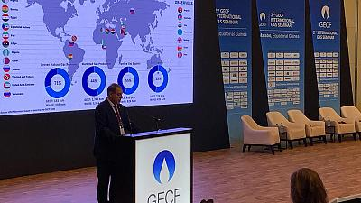 Africa to Double Natural Gas Production by 2040, Global Consumption to Double by 2050