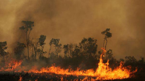 Brazil frees volunteer firefighters accused of setting Amazon blazes