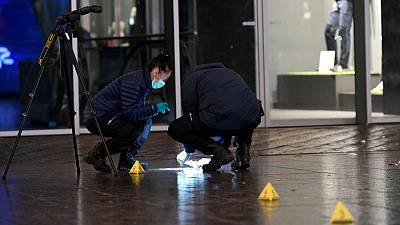 Dutch police hunt suspect in Hague stabbings