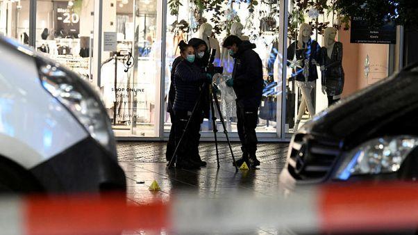 Police say no evidence suspect in Hague stabbing had terrorist motive