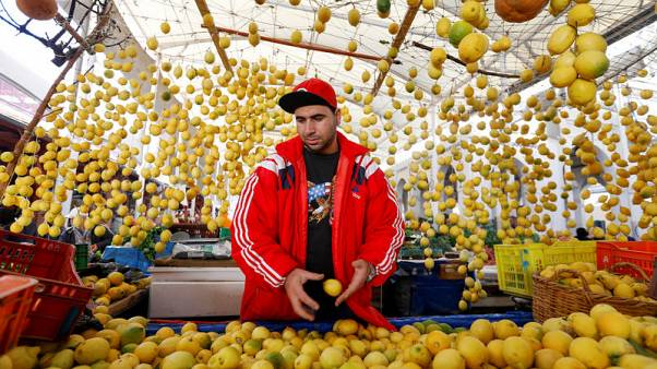 Explainer: Tunisia grapples with post-revolution economic slide