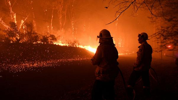 Australian firefighters worry about wildfires approaching Sydney