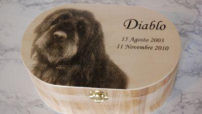 Liguria, sepoltura animali col padrone